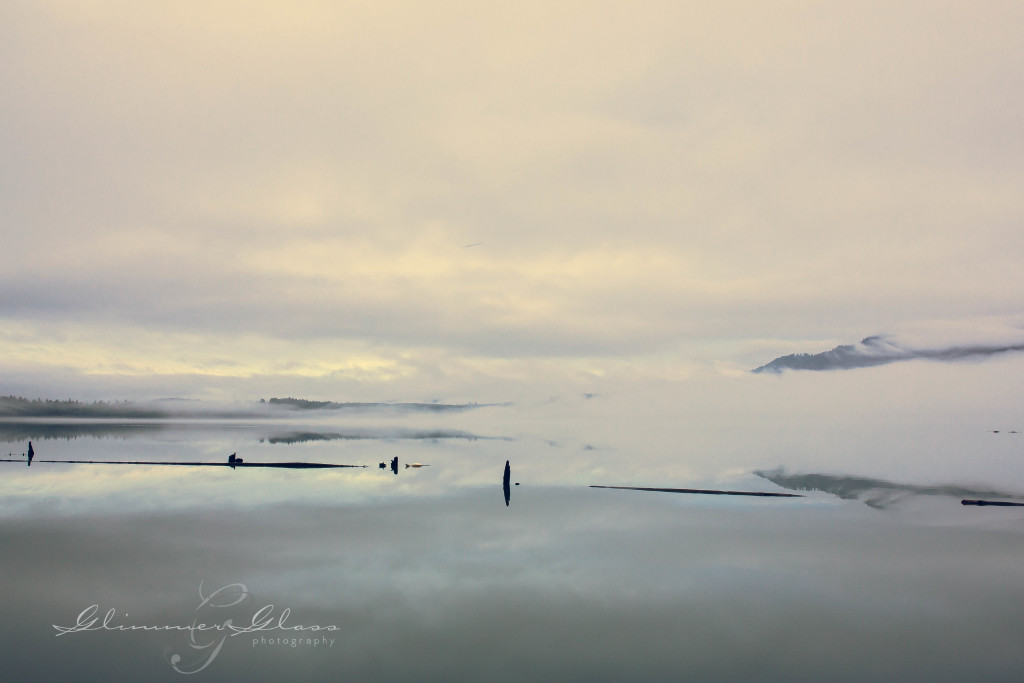 Foggy Morning on Lake Quinault